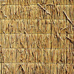 Reedboard